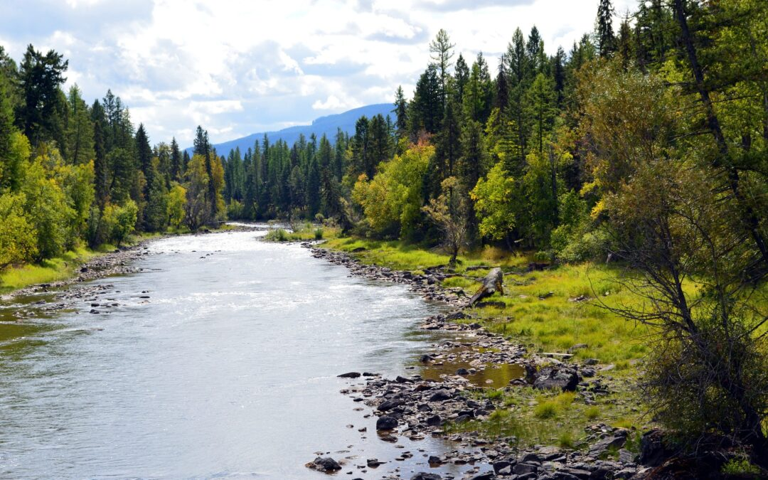 River in Montana, USA