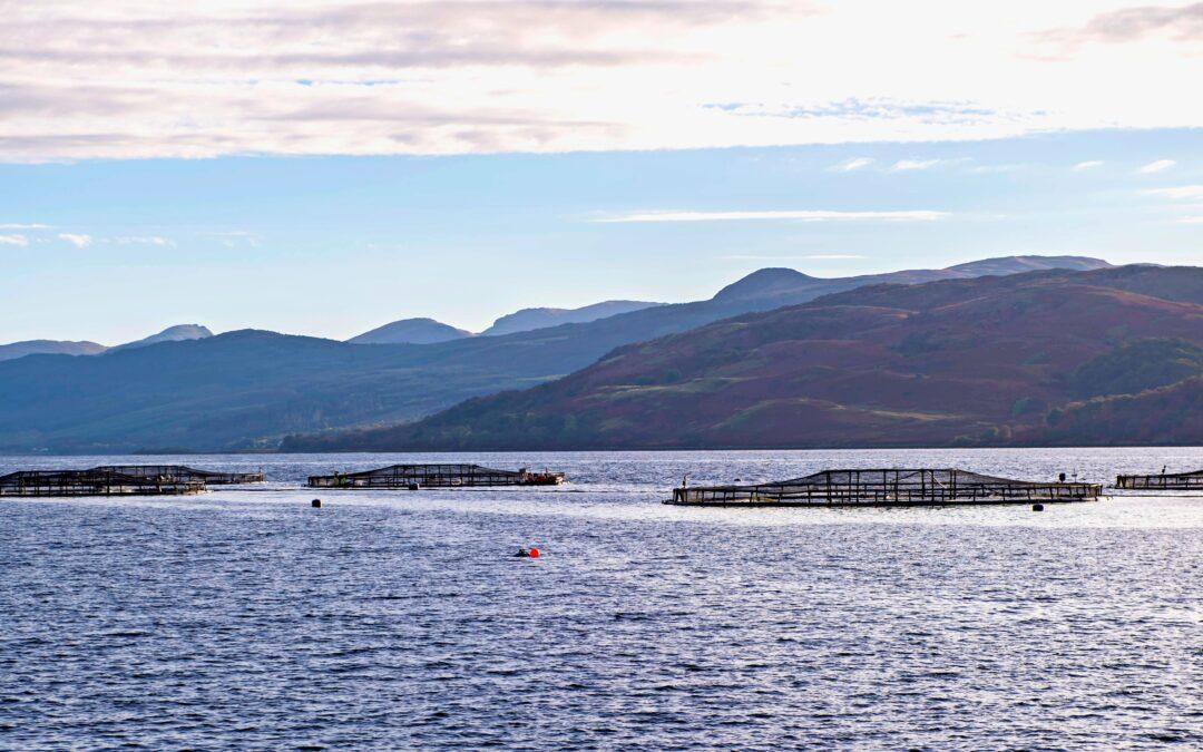 Loch Fyne salmon farm - Photo Credit SAIC